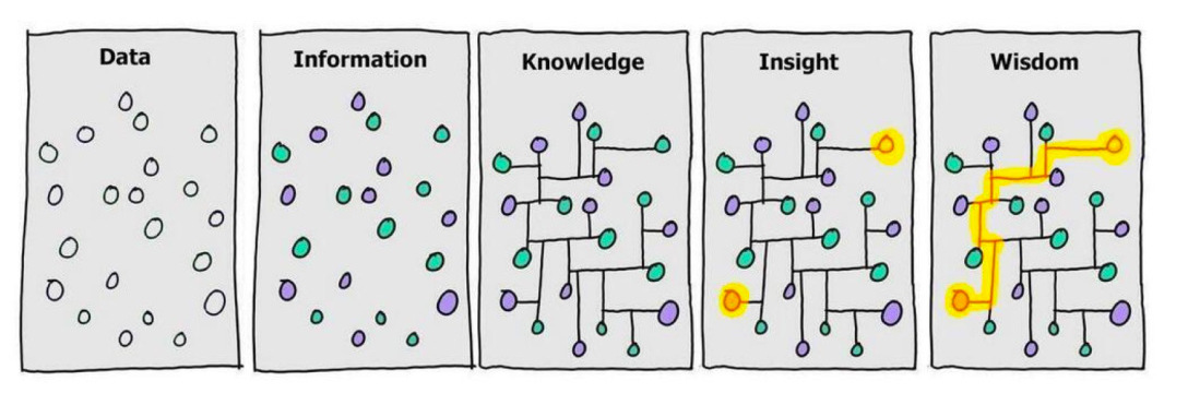 cartoon of data-information-knowledge-insight-wisdom